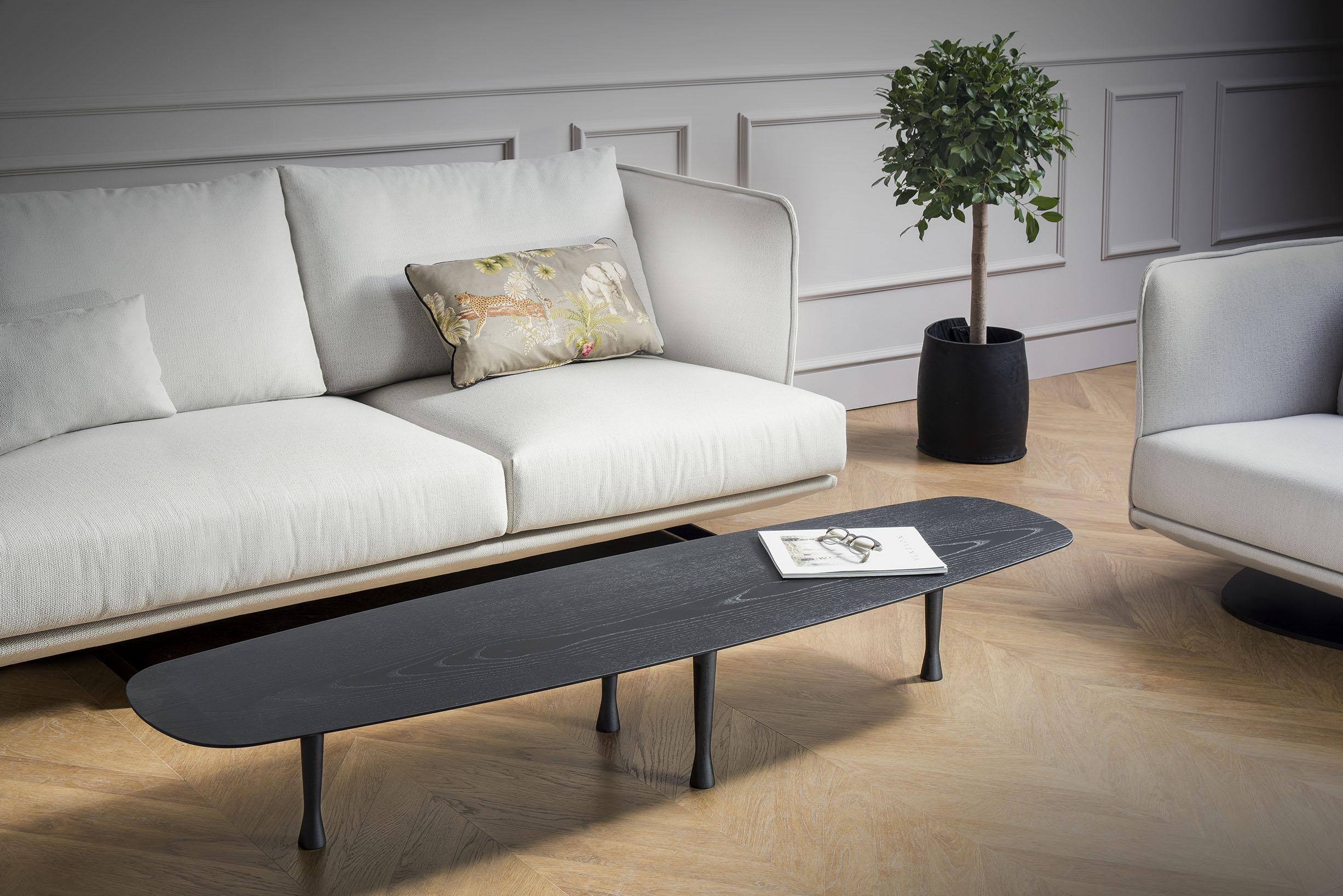 black-table-sofa-plant-magazine